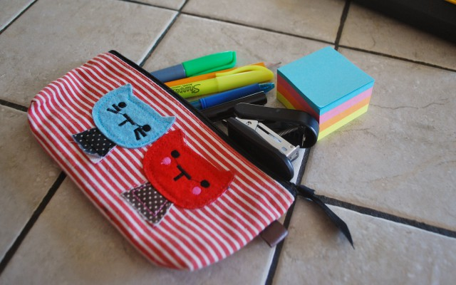a pencil case for necessities