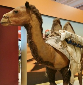 Silk Road exhibition