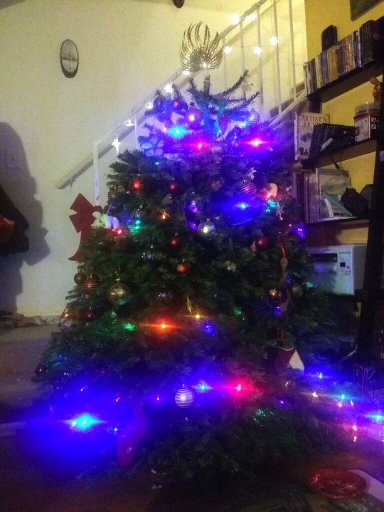 our not at all tiny tree