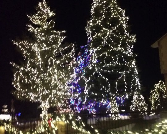 blurry pic, but those were very very pretty lights
